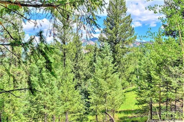 33343 Freda Road, Pine, CO 80470 (#4560162) :: The Gilbert Group