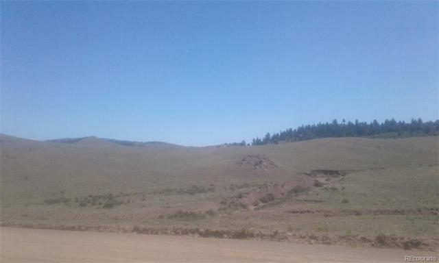 00 Nine Mile Heights, Hartsel, CO 80449 (MLS #4564974) :: 8z Real Estate