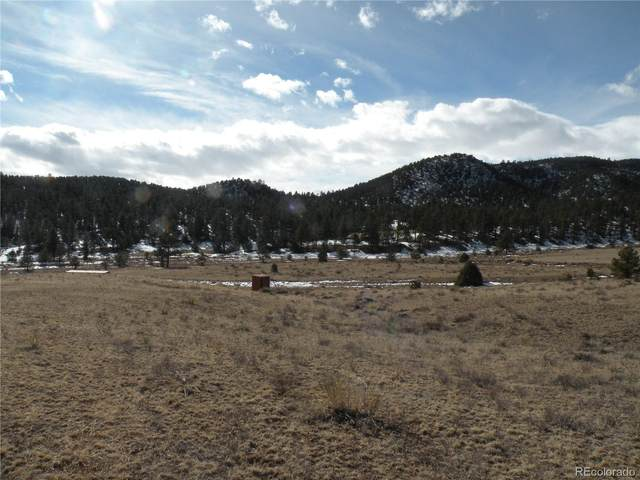 25 Mcclure Gulch Road, Cotopaxi, CO 81223 (#4566378) :: The DeGrood Team