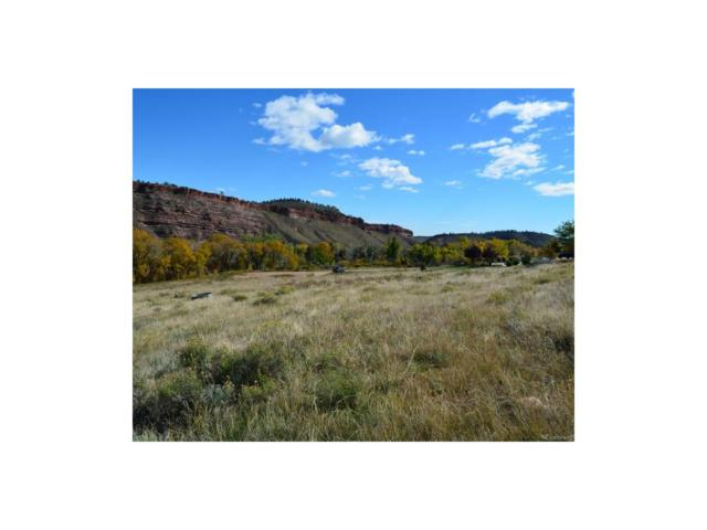 2845 Ellis Ranch Lane, Loveland, CO 80538 (MLS #4567057) :: 8z Real Estate