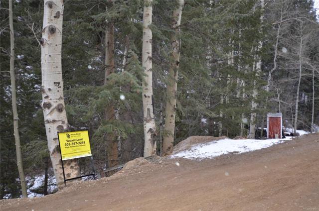 6721 Ute Creek Road, Idaho Springs, CO 80452 (#4567901) :: The Heyl Group at Keller Williams