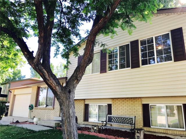 11682 Bellaire Way, Thornton, CO 80233 (MLS #4568820) :: 8z Real Estate