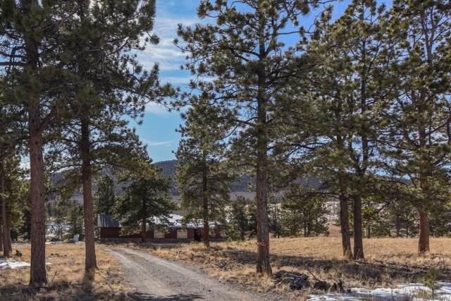 2315 Singletree Road, Buena Vista, CO 81211 (#4571189) :: The DeGrood Team