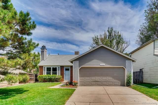 8448 Rabbitbrush Way, Parker, CO 80134 (#4573889) :: Briggs American Properties