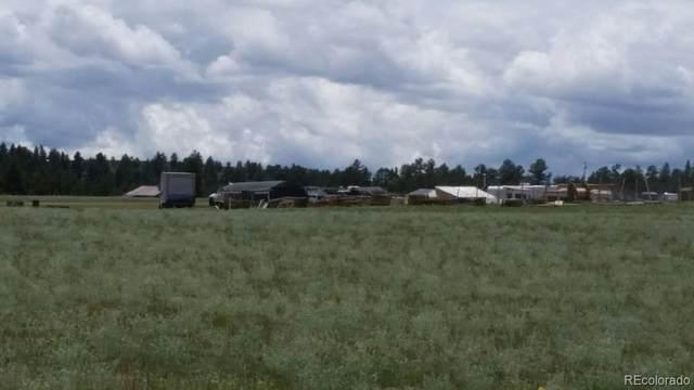 2031 Elkhorn Road, Hartsel, CO 80449 (MLS #4579367) :: Find Colorado
