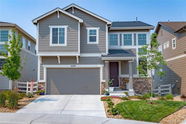 2579 Loon Circle, Castle Rock, CO 80104 (#4579741) :: The Colorado Foothills Team | Berkshire Hathaway Elevated Living Real Estate