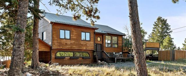 805 Hi Meadow Drive, Bailey, CO 80421 (#4581275) :: Structure CO Group