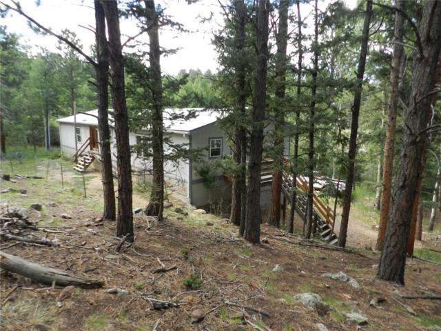 76 S Pine Drive, Bailey, CO 80421 (#4583065) :: Bring Home Denver