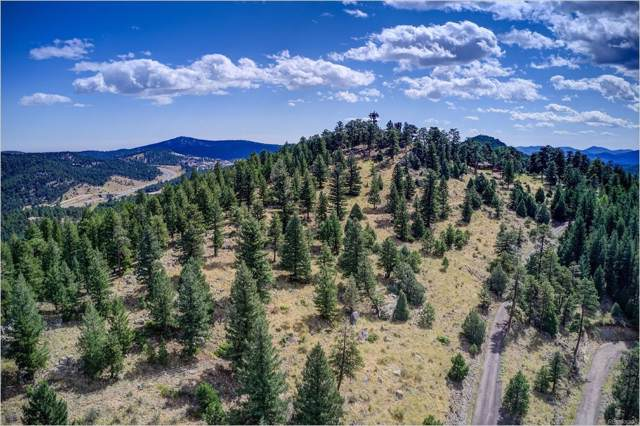 970 Soda Creek Road, Evergreen, CO 80439 (#4587562) :: The HomeSmiths Team - Keller Williams