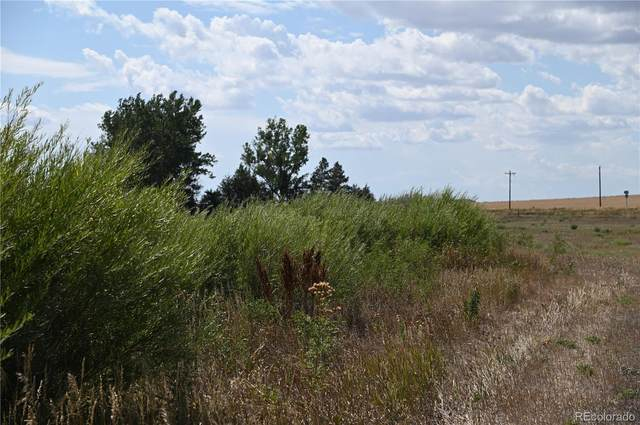 400 S County Road 157, Strasburg, CO 80136 (MLS #4587645) :: Bliss Realty Group