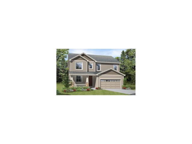 2953 Echo Park Drive, Castle Rock, CO 80104 (MLS #4588822) :: 8z Real Estate