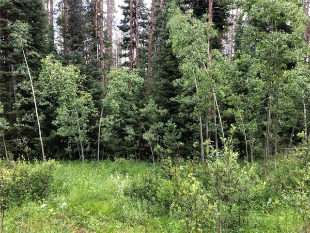 Springboard Trail, Oak Creek, CO 80467 (#4591968) :: The DeGrood Team