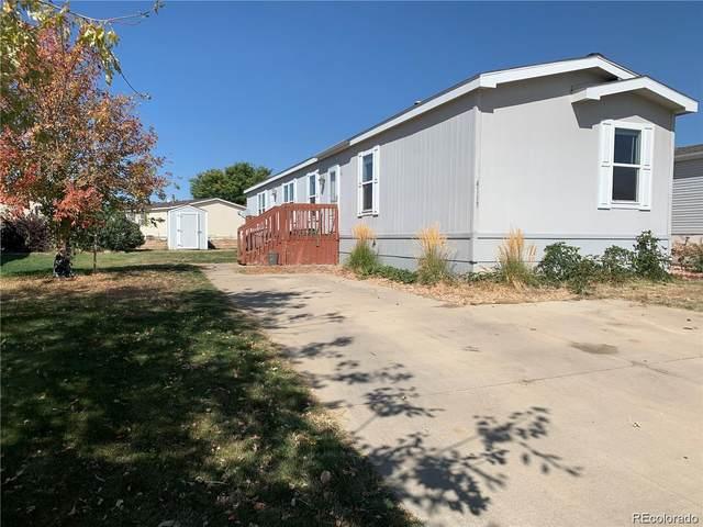 4113 Saltgrass Lane, Evans, CO 80620 (#4594493) :: The DeGrood Team