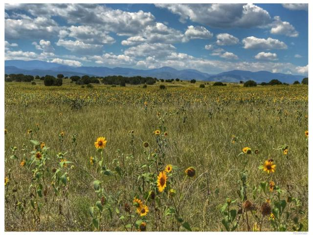 Lot 19A Red Creek Ranch Phase 1, Pueblo, CO 81005 (#4595005) :: The DeGrood Team
