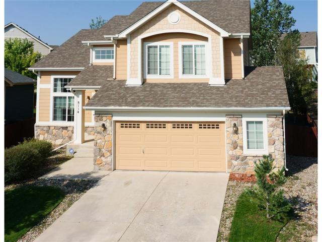 8114 Cedar Chase Drive, Fountain, CO 80817 (MLS #4598533) :: 8z Real Estate