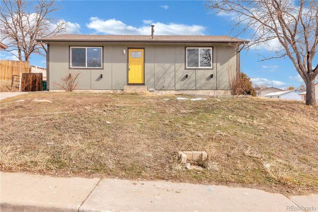 8204 Ladean Street, Denver, CO 80229 (#4599175) :: The Heyl Group at Keller Williams