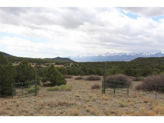 746 Mears Road, Cotopaxi, CO 81223 (MLS #4599177) :: 8z Real Estate