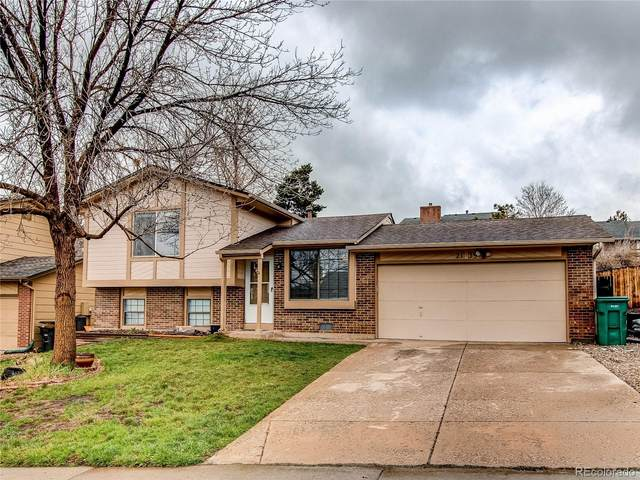 2139 Summerfield Drive, Castle Rock, CO 80104 (#4599593) :: HomeSmart