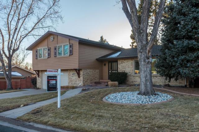 6597 S Hill Street, Littleton, CO 80120 (MLS #4599820) :: 8z Real Estate