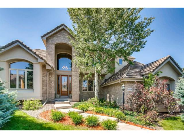 9506 E Hidden Hill Lane, Lone Tree, CO 80124 (MLS #4601949) :: 8z Real Estate