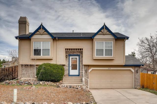 16295 Beauty Bush Place, Parker, CO 80134 (#4603868) :: The Dixon Group