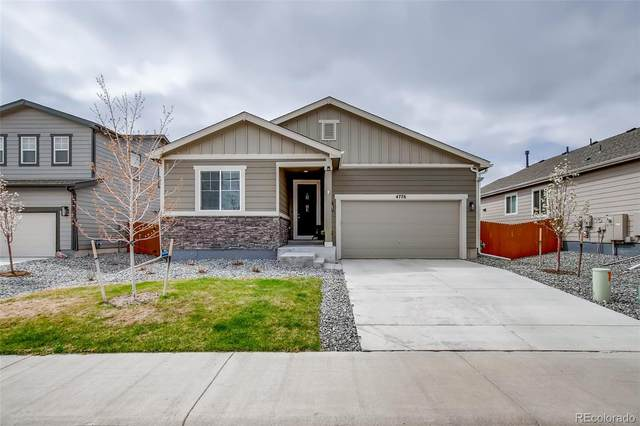4776 Native Birch Lane, Castle Rock, CO 80104 (#4609281) :: Mile High Luxury Real Estate