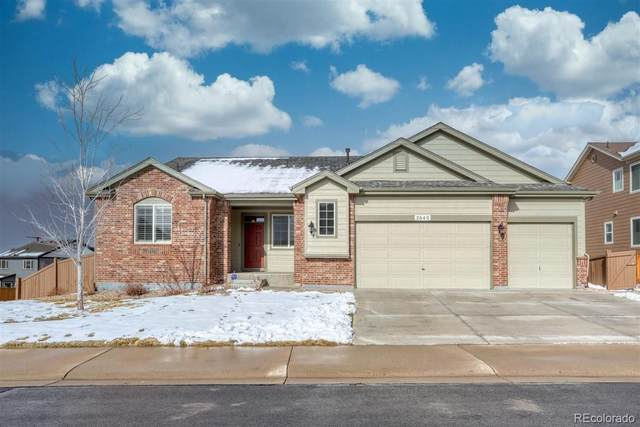 2640 Cache Creek Court, Castle Rock, CO 80108 (#4612191) :: Bring Home Denver with Keller Williams Downtown Realty LLC
