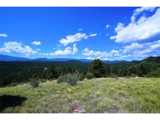 98 Wisp Lane, Bailey, CO 80421 (MLS #4612415) :: 8z Real Estate