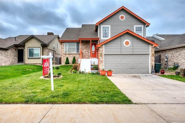 486 W 116th Place, Northglenn, CO 80234 (#4613897) :: HomeSmart Realty Group