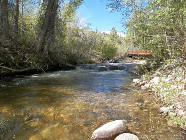 17320 Cr 306, Buena Vista, CO 81211 (MLS #4614000) :: 8z Real Estate