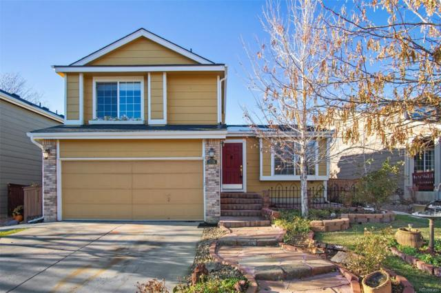 975 Timbervale Trail, Highlands Ranch, CO 80129 (#4616173) :: House Hunters Colorado