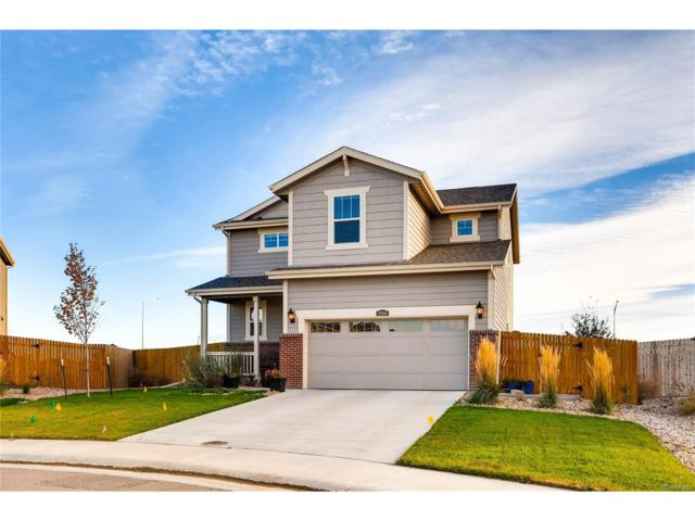 2580 E 160th Place, Thornton, CO 80602 (#4620078) :: The Peak Properties Group