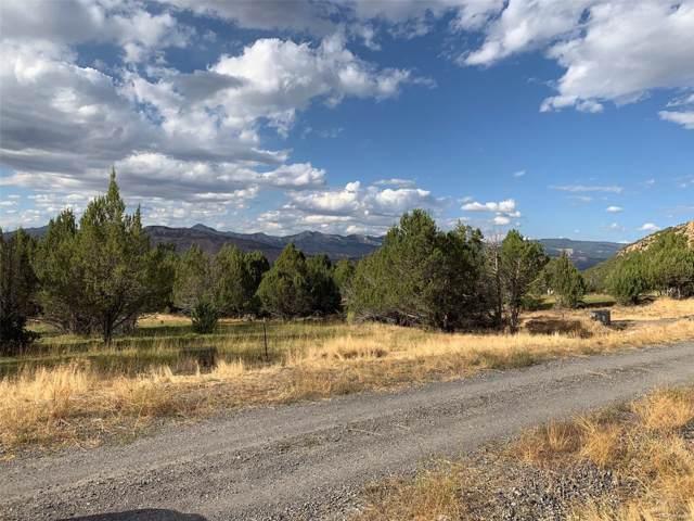 10787 52 1/2 Road, Molina, CO 81646 (MLS #4625562) :: 8z Real Estate