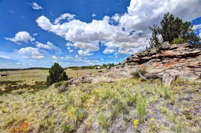635 Ouray Trail, Como, CO 80432 (#4625675) :: Structure CO Group