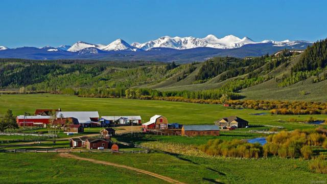 20571 County Road 103, Jelm, CO 82063 (#4629914) :: Colorado Home Finder Realty