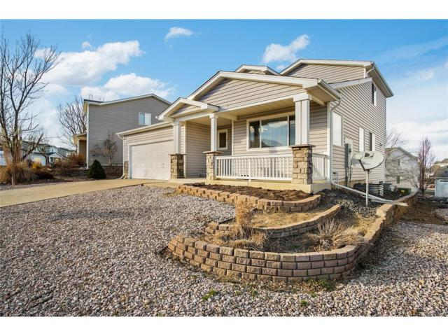 9637 Fox Den Drive, Littleton, CO 80125 (#4630344) :: The Sold By Simmons Team