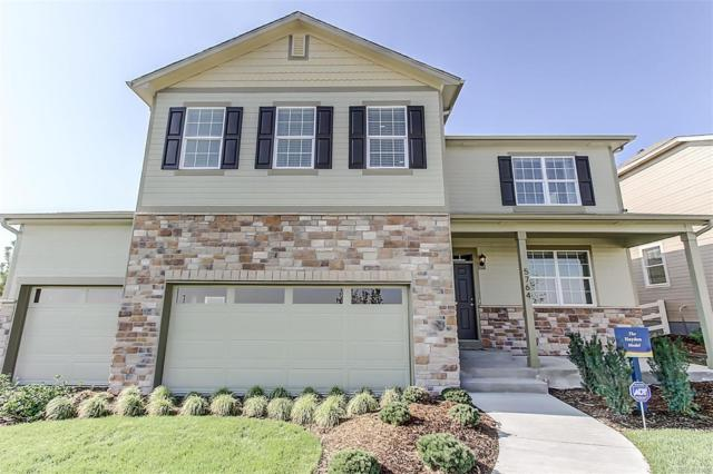 5764 High Timber Circle, Castle Rock, CO 80104 (#4631015) :: The Heyl Group at Keller Williams