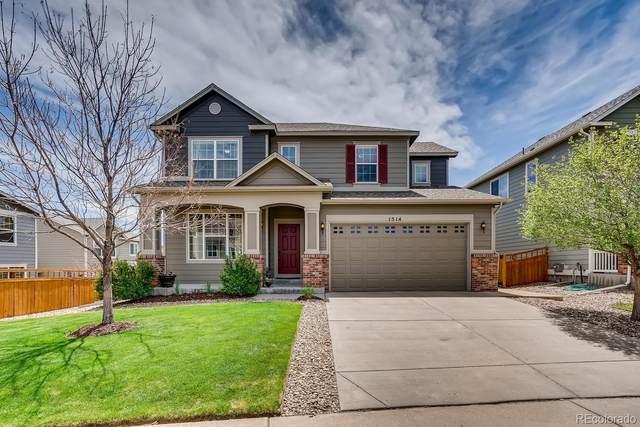 1514 Sky Rock Way, Castle Rock, CO 80109 (#4633787) :: Mile High Luxury Real Estate