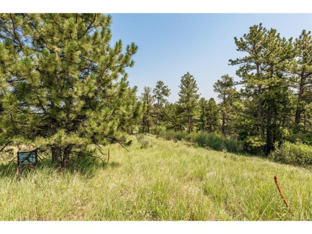 7920 Copper Wind Court, Parker, CO 80134 (MLS #4636103) :: 8z Real Estate