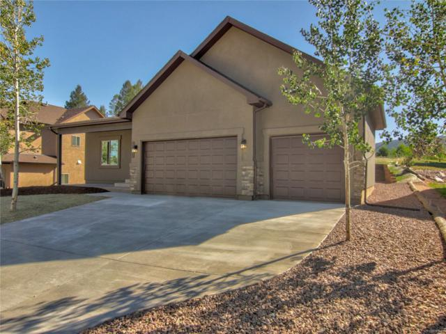 1145 Ptarmigan Drive, Woodland Park, CO 80863 (#4636196) :: HomePopper