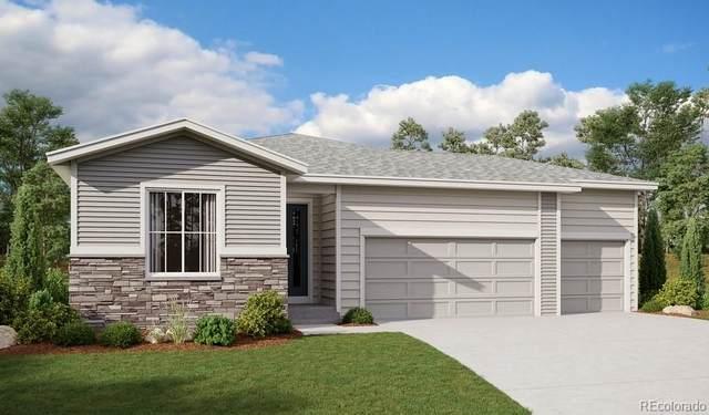 4060 Castle Vista Lane, Castle Rock, CO 80104 (#4637242) :: Sultan Newman Group