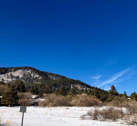 0 Gillia Street, Palmer Lake, CO 80133 (#4639660) :: Harling Real Estate