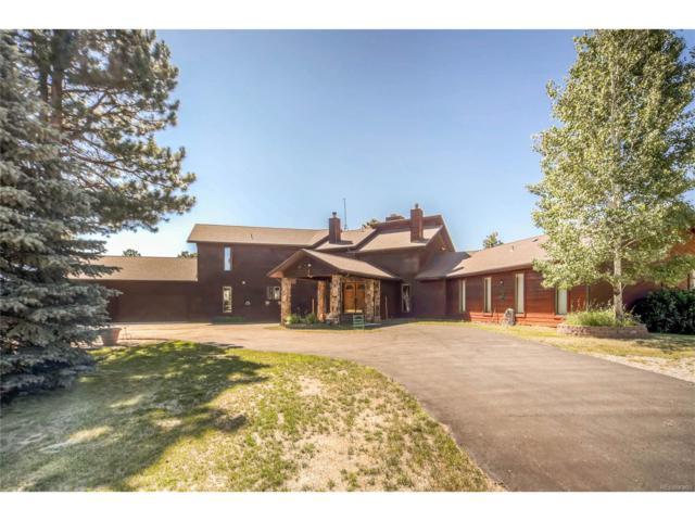 21606 Spring Creek Road, Pine, CO 80470 (MLS #4642264) :: 8z Real Estate