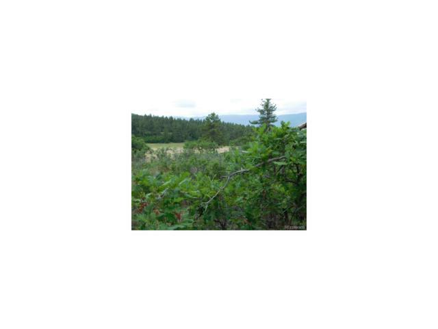 2430 Senecio Drive, Larkspur, CO 80118 (MLS #4643173) :: 8z Real Estate