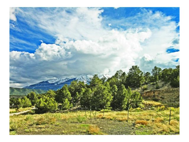 0000 Pinion Hills Drive, Howard, CO 81233 (MLS #4649248) :: 8z Real Estate