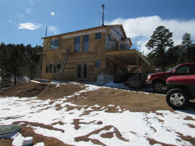 1328 Clark Road, Bailey, CO 80421 (#4653306) :: The Peak Properties Group