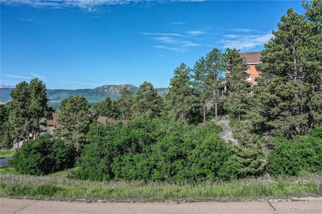 19942 Chisholm Trail, Monument, CO 80132 (MLS #4656870) :: 8z Real Estate