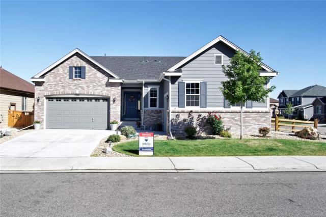 7201 Bandit Drive, Castle Rock, CO 80108 (#4658380) :: The HomeSmiths Team - Keller Williams
