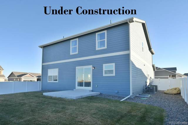 1884 Castle Hill, Fort Collins, CO 80513 (#4659212) :: The DeGrood Team