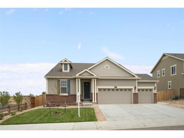 14094 Hudson Way, Thornton, CO 80602 (MLS #4660296) :: 8z Real Estate